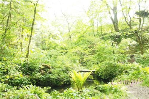 [レポ]軽井沢風景写真カメラ教室1日目 旧軽井沢と料理写真撮影