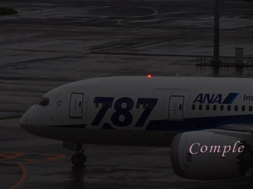 飛行機のアンチコリジョンライト(衝突防止灯)