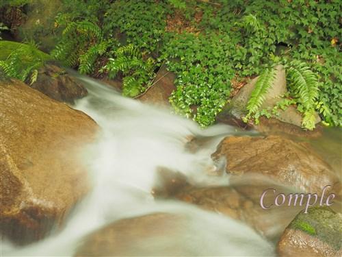 府中市郷土の森滝