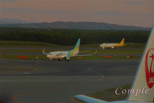 JALとエアドゥーとバニラ飛行機