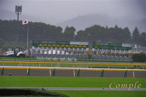 東京競馬場のゲート