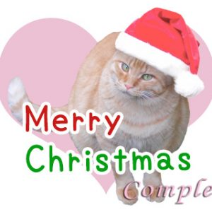 クリスマス猫LINEスタンプ