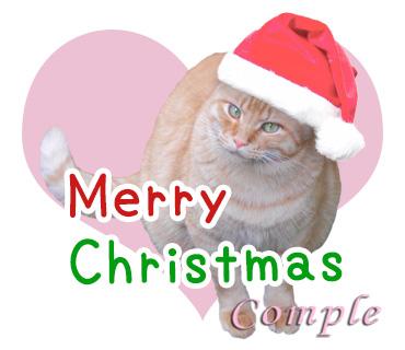 クリスマス猫写真のLINEスタンプ、今なら実質60円!
