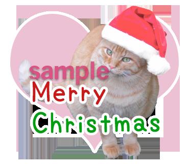 クリスマス猫写真LINEスタンプ