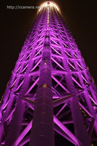 紫のスカイツリー