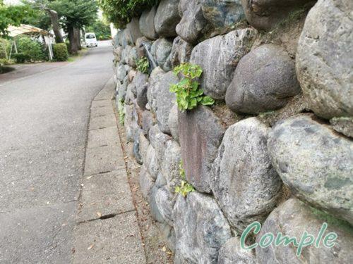 玉川学園の石壁