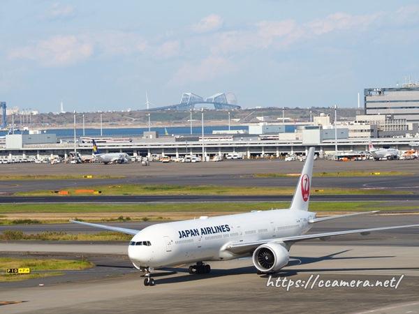 羽田空港のJAL飛行機