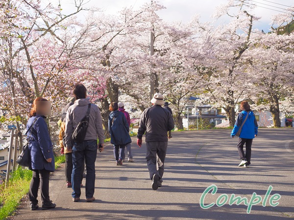 桜フォトウォーク