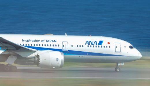 [受講者様の写真]入間航空祭ブルーインパルスと羽田空港飛行機写真2019