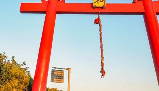 [終了]11月3日 橋の工事と猫と飛行機写真カメラ教室@羽田川崎