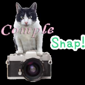 白黒猫写真カメラスタンプ